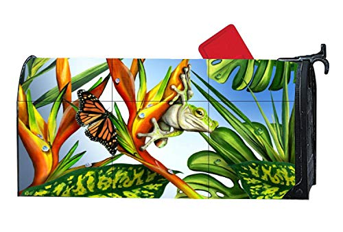 Customized Magnetic Mailbox Cover Standard Mailbox Wrap with Animals Frogs Themed Design, 6.5 x 19 Inches - Frog Murals (Mural Frog)