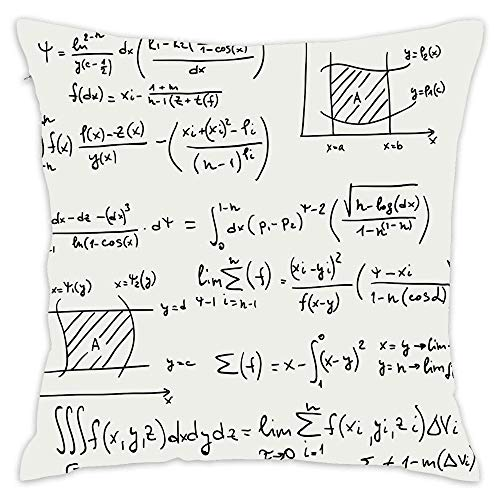 Podas Big Scientific Research Graphs Proof Field of Algebra Physics Decorative Pillow Case Throw Pillows Covers for Couch/Bed 18 X 18 Inch Home -
