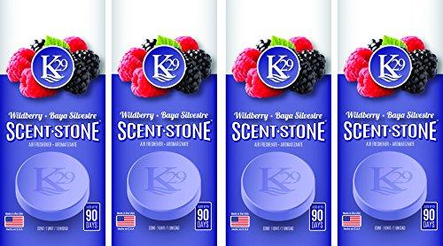 - Sterling Teal (K16018-4) K29 'Wild Berries' Stone Air Freshener, (Pack of 4)