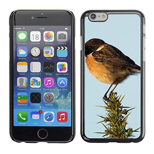 """Premio Sottile Slim Cassa Custodia Case Cover Shell // F00031239 Oiseau chanteur // Apple iPhone 6 6S 6G PLUS 5.5"""""""