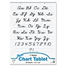 """Pacon Chart Tablet, 24""""x32"""", 25 Sheets/Tablet"""