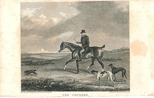 Scarce Type (Courser horse type 1828 scarce antique engraved horse view print)