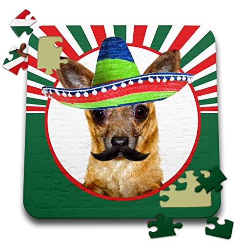 3dRose Doreen Erhardt Cultural - Fun Mexican Chihuahua Dog in a Sombrero for Cinco de Mayo - 10x10 Inch Puzzle (pzl_310172_2)
