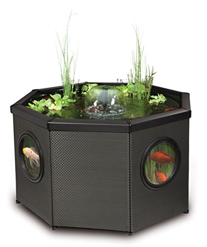 Blagdon Affinity Octagon Mocha Weave Pool, Comes with Inpond 5-in-1 3000 Filter Pump with UV Clarifier, LED Spotlight…