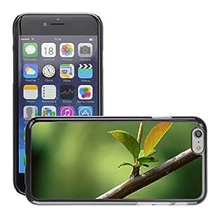 Super Stellar Slim PC Hard Case Cover Skin Armor Shell Protection // M00050821 aero macro new leaves // Apple iPhone 6 4.7