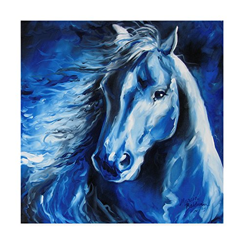 Trademark Fine Art Blue Thunder by Marcia Baldwin Fine Art, 18