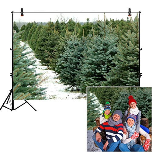 Allenjoy 7x5ft Green Pine Forest Backdrop for Studio Photography Pictures Holiday Xmas Christmas Winter Tree Farm Nature Branch Snow Background Newborn Children Family Portrait Photo Shoot Props