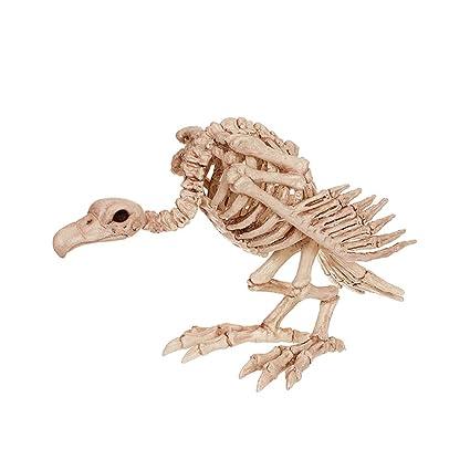 C&S Esqueleto de águila Calva Casa encantada Esqueleto de Animal Bar ...