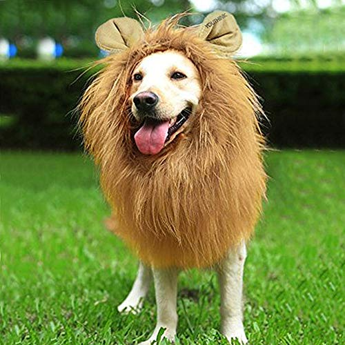 - YOUTHINK Lion Mane for Dog Large Medium with Ears Pet Lion Mane Costume Button Adjustable Holiday Photo Shoots Party Festival Occasion Light Brown