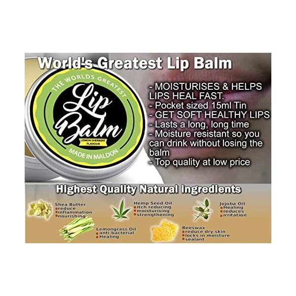 The Worlds Greatest Lip Balm. Repair, Heal, Protect, Moisturise and Refresh. Lemon Sherbert Flavor 15ml Size with Shea Butter, Beeswax, Jojoba Oil, Hemp Seed Oil