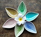 Astra Gourmet Set of 6 Multipurpose Mini Ceramic Seasoning Dishes/Appetizer Plates/ Multicolor Leaf Shape Porcelain Saucers Dipping Bowls Set for Vinegar/Soy Sauce/Wasabi