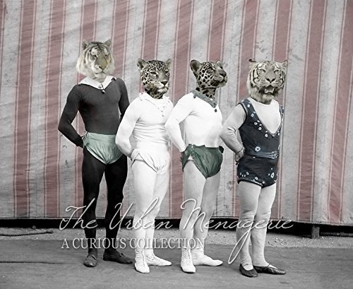 [Anthropomorphic Portrait, Circus Tigers Art Print, Multiple Sizes Available, Unframed] (Inanimate Object Costume)