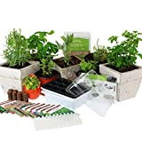 Indoor Herb Gardenings Review and Comparison