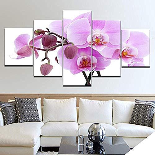 5 Imprimir poster lienzo Arte de la pared orquideas rosadas Decoracion arte pintura al oleo Cuadros modulares en la pared sentado