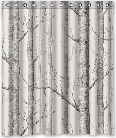 Top Design Birch Tree Shower Curtain 60quotw X 72quoth