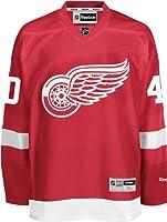 NHL Detroit Red Wings Henrik Zetterberg Men's Center Ice Team Premier Jersey