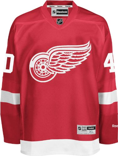 b29d6cdbdcf NHL Detroit Red Wings Henrik Zetterberg Men s Center Ice Team Color Premier  Jersey with Name and