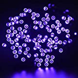 FZZ698 LED Solar Powered String Light Garden Party Fairy Lamp 22M for Halloween Home and Kitchen (purple)