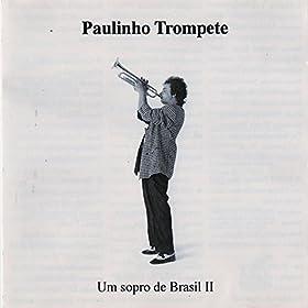 Amazon.com: Inútil Paisagem: Paulinho Trompete: MP3 Downloads