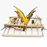 Parrot Wooden Bird Swing Parakeet Cage Hammock Hanging Toy for Small Parakeets Cockatiels Conures Macaws Parrots Love Birds Finches (2 Floors)