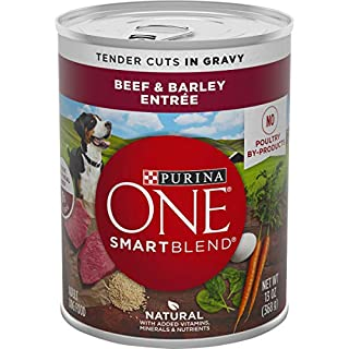 Purina ONE Natural, High Protein Gravy Wet Dog Food, SmartBlend Tender Cuts in Gravy Beef & Barley - (12) 13 oz. Cans