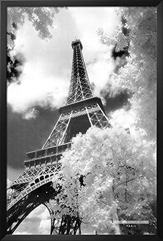 Professionally Framed Eiffel Tower (Parc du Champ de Mars) Art Poster Print - 24x36 with RichAndFramous Black Wood (Eiffel Tower Dvd Tower)