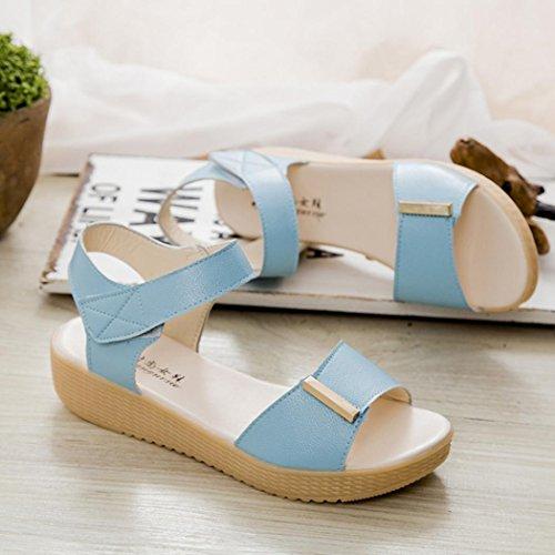 Sandalias de vestir, Ouneed ® Mujeres suave verano ocio zapatos dulce moldeado casa playa sandalias azul