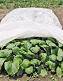 All-Purpose Garden Fabric 12' X 20'