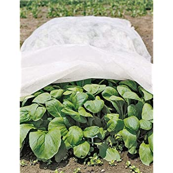 Superb All Purpose Garden Fabric 6u0027 X 50u0027