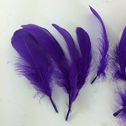 Sowder Natural Goose Feathers Clothing Accessories Pack of 100(purple) (Purple Feathers)