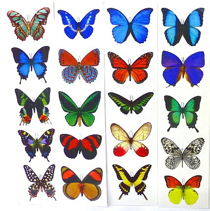 Butterfly Stickers - 4