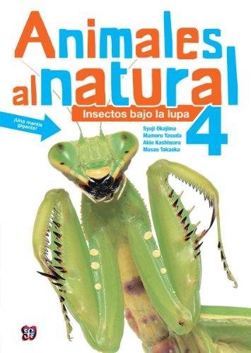 Animales al natural 4. Insectos bajo la lupa (Spanish Edition) [Masae y Mamoru Yasuda Takaoka] (Tapa Dura)
