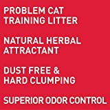 Dr. Elsey's Cat Attract Problem Cat Training