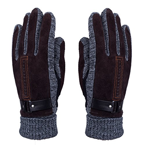 Men's Winter Leather Gloves - WITERY Thick Warm Fleece Windproof Gloves Cold Proof Thermal Mittens - Ideal for Dress Driving Cycling Motorcycle Camping Coffee Mens Mesh Leather Glove