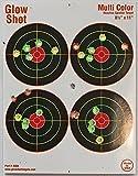 "Best Target Instantly - 25 Pack - 4 Bullseye 8 1/2"" Review"