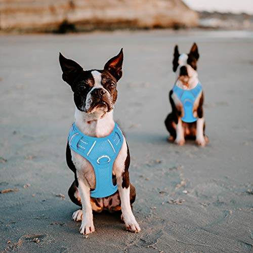BARKBAY No Pull Dog Harness Large Step in Reflective Dog Harness with Front Clip and Easy Control Handle for Walking Training Running with ID tag Pocket