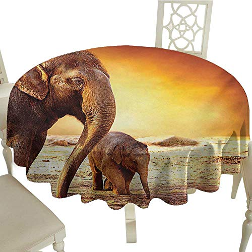 Plaid Round Tablecloth 70 Inch Zoo,Mother and Baby Elephant Family in Kenya Safari Landscape Environment,Orange Yellow Dark Orange Great for,restauran & More
