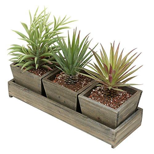 (MyGift Set of 3 Rustic Brown Wood Succulent Planter Square Pots w/Tray)