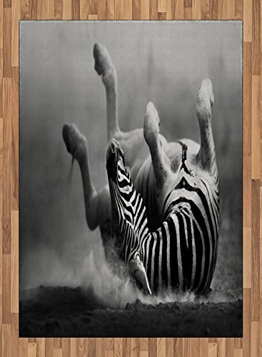 Africa Area Rug by Ambesonne, Zebra Rolling in the Dust Artistic Savage Animal Mammal Activity Eco Photo, Flat Woven Accent Rug for Living Room Bedroom Dining Room, 5.2 x 7.5 FT, Black and White by Ambesonne