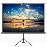 TaoTronics Projector Screen with Stand, TT-HP020 Indoor Outdoor Movie Projection Screen 120'' Diagonal 4:3 with Wrinkle-Free Design (Easy to Clean, 1.1 Gain, 160° Viewing Angle & Includes a Carry Bag)