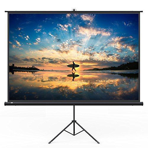 TaoTronics Projector Screen with Stand, TT-HP020 Indoor Movie Screen 120'' Diagonal 4:3 with Wrinkle-Free Design (Easy to Clean, 1.1 Gain, 160° Viewing Angle and Includes a Carry Bag) by TaoTronics