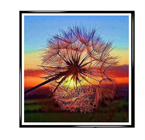DIY Diamonds Painting Sunset Dandelion Colorful Peacock For Room Décor or Killing Time (Dandelion (Designer Solid Diamond Cube)