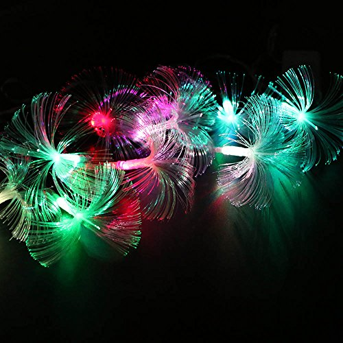 HuntGold 2.5M 10 LED Fiber Optic String Light Fairy Lamp Battery Operated(2 x AA) Ideal for Home Kitchen Office Decor Party Decoration Christmas Tree Hanging Light Multicolor