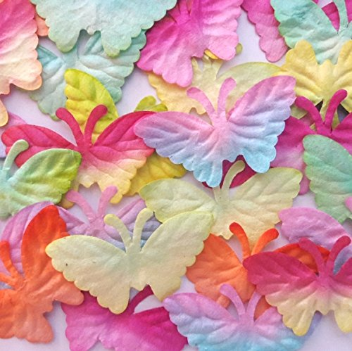 Butterfly Mulberry Paper Scrapbooking De - Natural Shells Needlepoint Shopping Results