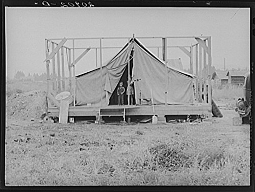 Family living in tent while building the house around them. Near Klamath Falls, Klamath County, Oregon. See general caption number 47