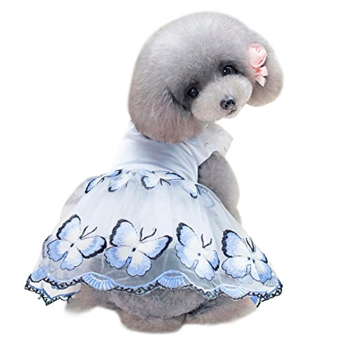 (OOEOO Small Puppy Dress Pet Apparel Butterfly Pearl Shirt Dog Cat Costume Summer Skirt (Blue,)