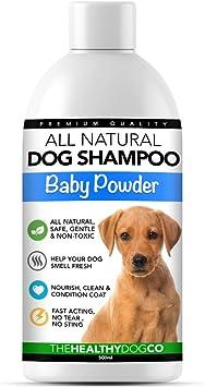 Migliori 7 Shampoo per cani