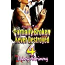 Partially Broken Never Destroyed 4: Unholy Matrimony
