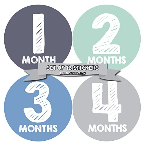 Monthly Baby Stickers by Months In Motion | 12 Month Milestone Sticker for Newborn Babies Boy (015) by Months In Motion