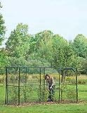 Gardener's Supply Company Crop Cage, 4 x 12